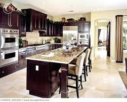 Kitchen Ideas Dark Cabinets Custom Decoration