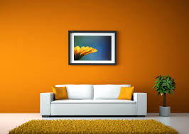 Room Wall Orange Living Room Walls Pleasing 15 Lively Orange Living Room