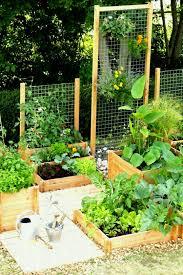 creative diy backyard gardening ideas you need to know