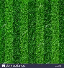 Green grass soccer field background Stock Photo 97882458 Alamy