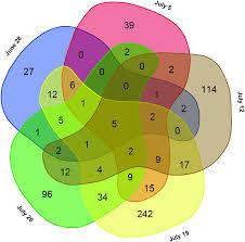 venn diagram drawer venn diagrams for degs over all sampling days the venn