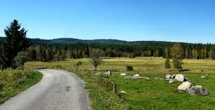 Pro zemědělce a lesníky se na jihu Čech otevřely další hranice | Zemědělec