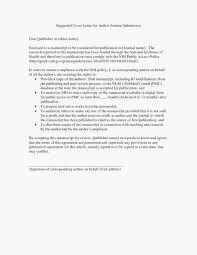 Resume Summary Examples For Any Job Beautiful Personal Summary