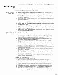Resume Skills Example General Manager Management Emphasis 100 Resume Skills Example 100a 74
