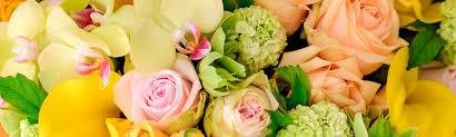 mary murrays flowers