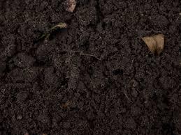 dark dirt texture seamless. Exellent Texture Black  For Dark Dirt Texture Seamless O