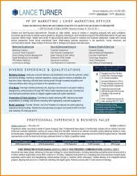 Best Executive Resume Format Resumes 13 Hashtagbeard Pertaining To