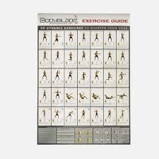 65 Veracious Workouts Chart