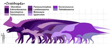 Resultado de imagen de ornithopoda