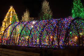 you may have seen the garden in bloom in summer but have you seen it glow in the winter join us at winter garden aglow at the idaho botanical garden and