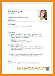 Resume Builder and PDF CV Maker   Resume Star SP ZOZ   ukowo sample cv template hr recruitment naukri resume writing sample how to write  cv for job application pdf cv format for job application pdf sample cv for  job