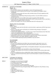 Team Skills Resume Team Member Resume Samples Velvet Jobs