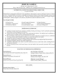 Director Resume Sample Director Resume 27