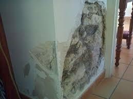 Enduit Mur Interieur Chaux Evtod