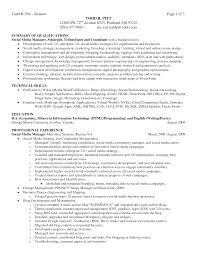 resume executive summary sample cipanewsletter cover letter resume sample summary sample resume summary statement