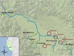 Multi-class chemical exposure in rural Peru using <b>silicone wristbands</b>