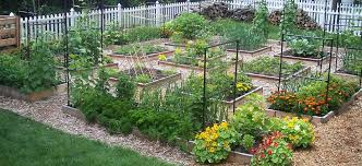 Square Foot Gardening Store