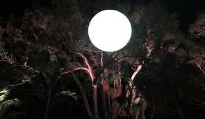 miami landscape lighting. landscapelightingmiami miami landscape lighting