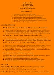 Independent It Consultant Resume Of People Soft Consultant Resume