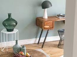 Plaquette de parement pierre naturelle noir plume. Peinture Ecologique Algo Pour Un Interieur Plus Vert Mettez De La Couleur Chez Vous Leroy Merlin