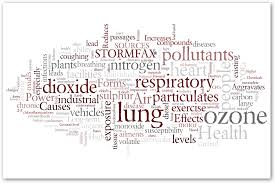 essay about air pollution cause and effect << essay help essay about air pollution cause and effect