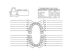 Babies First Teeth Chart 38 Printable Baby Teeth Charts Timelines Template Lab