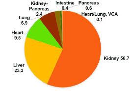 Pie Chart Showing The Breakdown Of Solid Organ Transplants