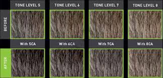 Goldwell Reshade Color Chart Goldwell Men Reshade 5 Minutes Hair Color Glamot Com