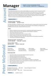 Account Manager Cv Template Sample Job Description Resume Sales And Marke.
