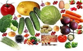 Овощеводство это отрасль растениеводства овощей и бахчевых  Овощеводство это отрасль растениеводства овощей и бахчевых культур норма потребления овощей и зависимость здоровья