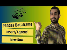how to insert add a new row in pandas