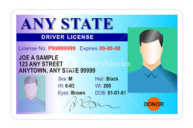 Male License Stock Royalty-free Images Storyblocks Image Generic - Driver State