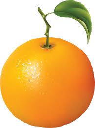 orange clipart png. orange image free download clipart 4 png a