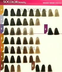 Dream Age Color Chart Matrix Socolor Dream Age Color Chart Futurenuns Info