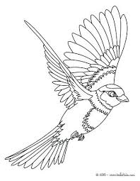 Bird Coloring Pages Bird Sitting On A Branch Flying Bird Coloring