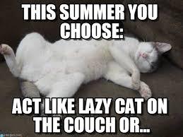 This Summer You Choose: - Plop meme on Memegen via Relatably.com