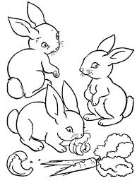 Free Colouring Pages Animals Farm Baby Animals Coloring Pages Unique