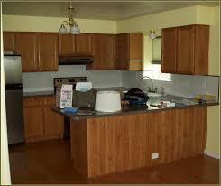 Laminating Kitchen Cabinets Laminated Plywood Kitchen Cabinets Home Design Ideas