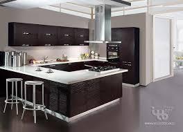 custom modern kitchen cabinets. Custom Modern Kitchen Cabinets Photo - 1 Custom Modern Kitchen Cabinets