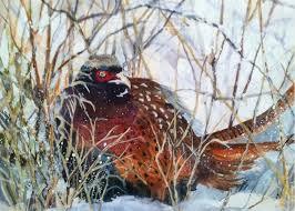 Pheasant Hiding Painting by Polly Barrett