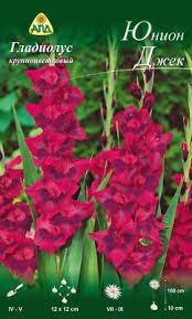 АПД <b>Гладиолус</b> Юнион Джек / A310161 (10шт) Семена цветов ...