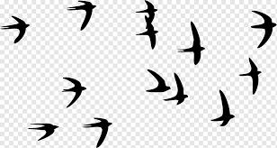 swallow bird paper wall decal tattoo
