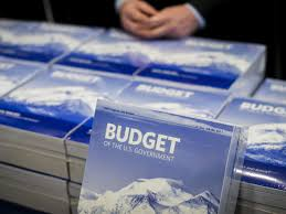 Image result for 2017 budget federal