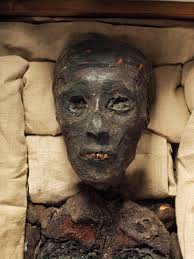 mystery of king tut s death solved be not