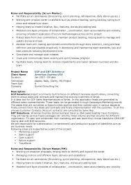 scrum master resume indeed project manager 2 roles and responsibility