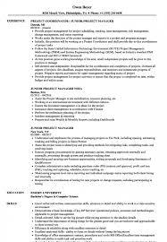 Junior Project Manager Resume Samples Velvet Jobs S Ukashturka