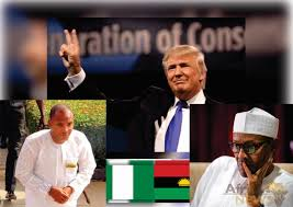 Image result for Nigeria's unity vs trump