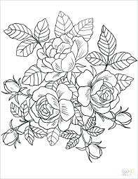 free coloring pages flowers coloring pages for s flowers flower coloring pages for kids printable best