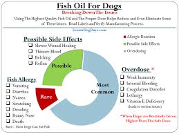 Fish Oil Dosage Chart For Dogs Dog Fish Oil Overdose Vs Side Effects Plus The Critical