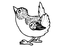 Kleurplaat Vogeltje Afb 20698 Images